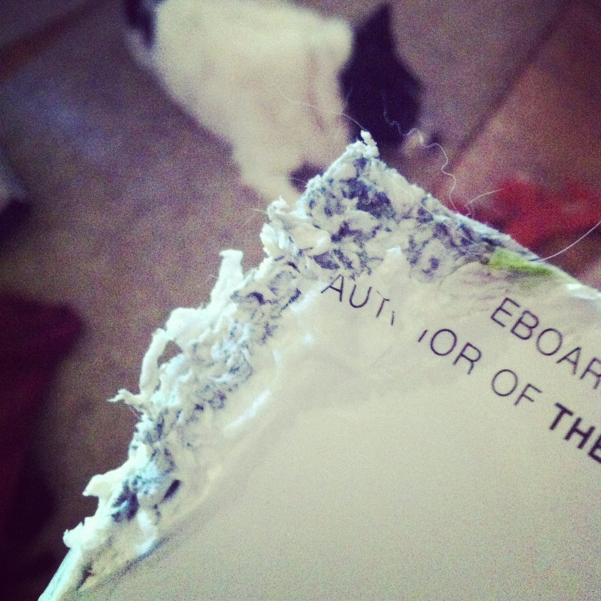 Dog Chewed Book